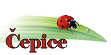 epice