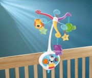 Fisher Price Precious Planet  Kolotoč 2 v 1