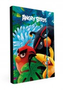 Box na sešity A4 Angry Birds Movie