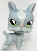 LITTLEST PET SHOP pes bostonský terier LPS 857 958 1025 1079 1789