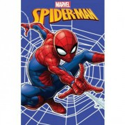 deka 100x150 Spiderman